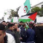 بالفيديو : مظاهرات شعبية لمساندة الإنتخابات الرئاسية والجيش